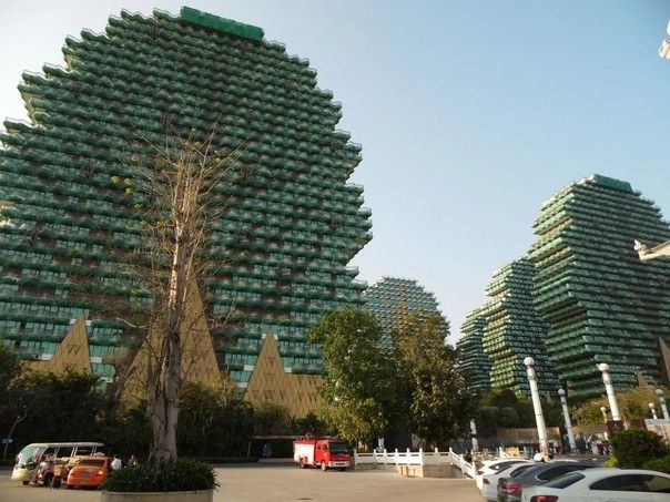 """Beauty Crown Hotel в Санье (Китай)Гостиничный комплекс Beauty Crown Hotel, известный также, как """"дома-деревья"""", расположен в китайской провинции Хайнань. Он возведен несколько лет назад и считается одним из самых крупных отелей в мире. Девять высотных башен, выполненных в стиле деревьев-пикселей из игры """"Майнкрафт"""", вмещают почти 7 тысяч номеров.Отель позиционируется, как 7-звездочный, однако в составе комплекса есть и """"обычные"""" 5-звездочные номера. Кроме этого в состав комплекса входят: торговый центр площадью 300 000 м2, конференц-центр площадью 6600 м2, 11 кинотеатров, спа-центр площадью 1800 м2, респектабельный яхт-клуб и 48 заведений питания.Строительство велось с 2012 по 2016 годы. Бюджет проекта составил свыше миллиарда долларов.#небоскребы #китай"""