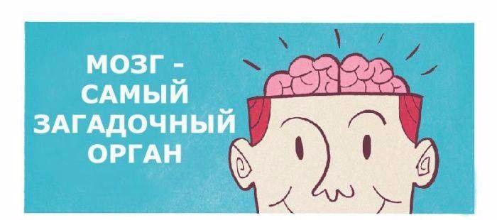 Как развить неограниченные возможности мозга? <br /><br />Возможности вашего мозга беспредельно широки. Не верите? Попробуйте заняться тренировкой собственного серого вещества. Это позволит вам достичь больших успехов в бизнесе, карьере и общении. <br />Всем своим достижениям в работе, учебе или обществе человек обязан упорной работе мозга. Мозговая активность важна для всех, школьников и студентов, бизнесменов и служащих. Всем известно, что положительно влияет на мозг изучение нового, чтение книг, просмотр познавательных передач. <br /><br />Как же развить нестандартное мышление, активируя части мозга, которые не были задействованы раньше? Тренировка мозга не потребует от вас много времени, достаточно потратить всего 15 минут в течение дня. <br />Есть простой способ по-другому взглянуть на возможности своего мозга. Возьмите 4 белых листа бумаги. На первом напишите что-нибудь привычной для вас рукой слева направо. На втором – тоже привычной рукой, но уже в обратном направлении. На 3 и 4 листах проделайте то же самое другой рукой. Первый лист – это образец, к которому вы должны стремиться. Повторяйте свои попытки день ото дня - и вы увидите, что начали мыслить по-другому. Это простое упражнение заставляет работать недействующие в повседневной жизни области мозга. <br /><br />В итоге такая тренировка позволить вам принимать нестандартные решения и находить простой выход даже из самых сложных ситуаций, что неоднократно потребуется на работе и дома.